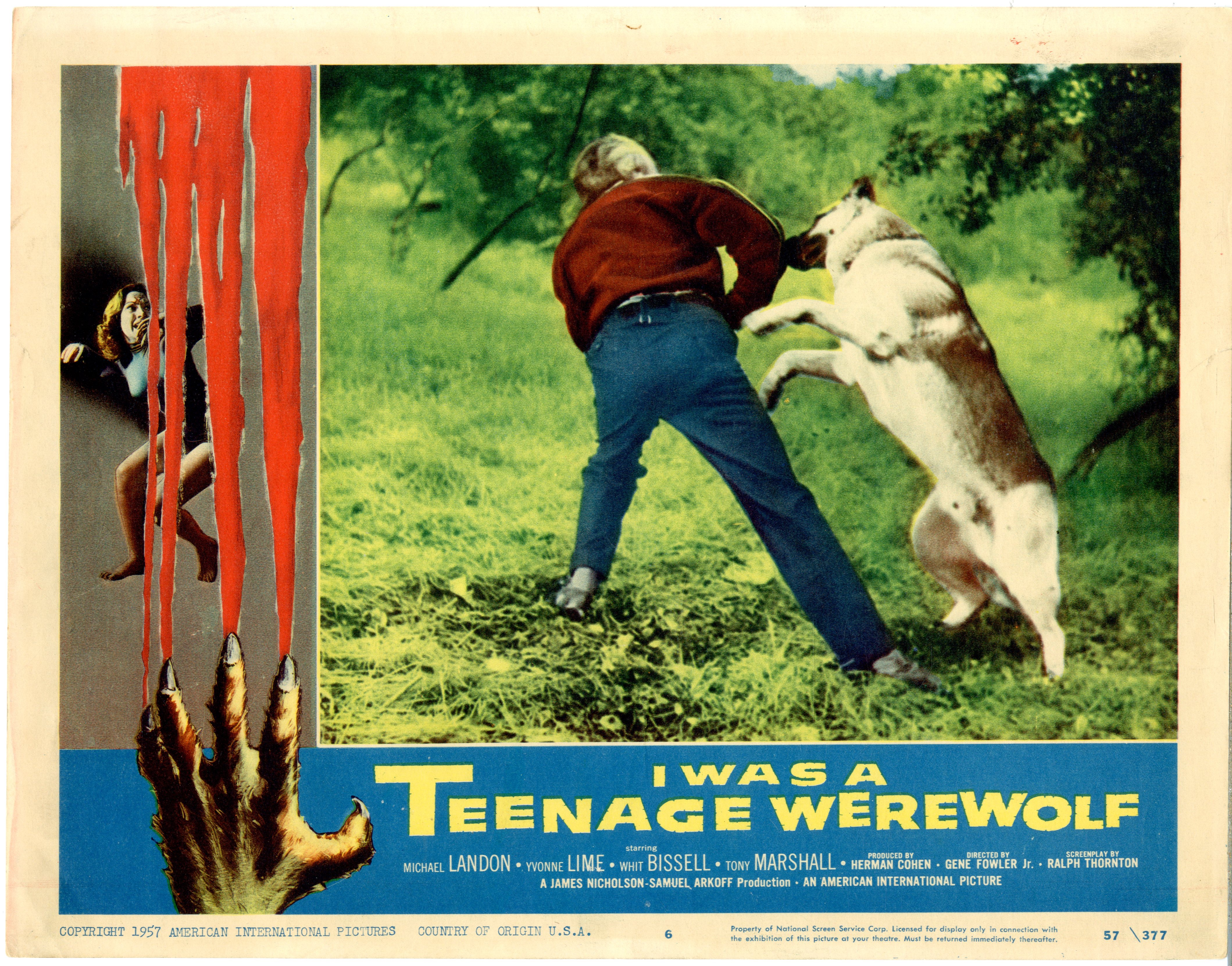 I Was A Teenage Werewolf   1957 - 22048