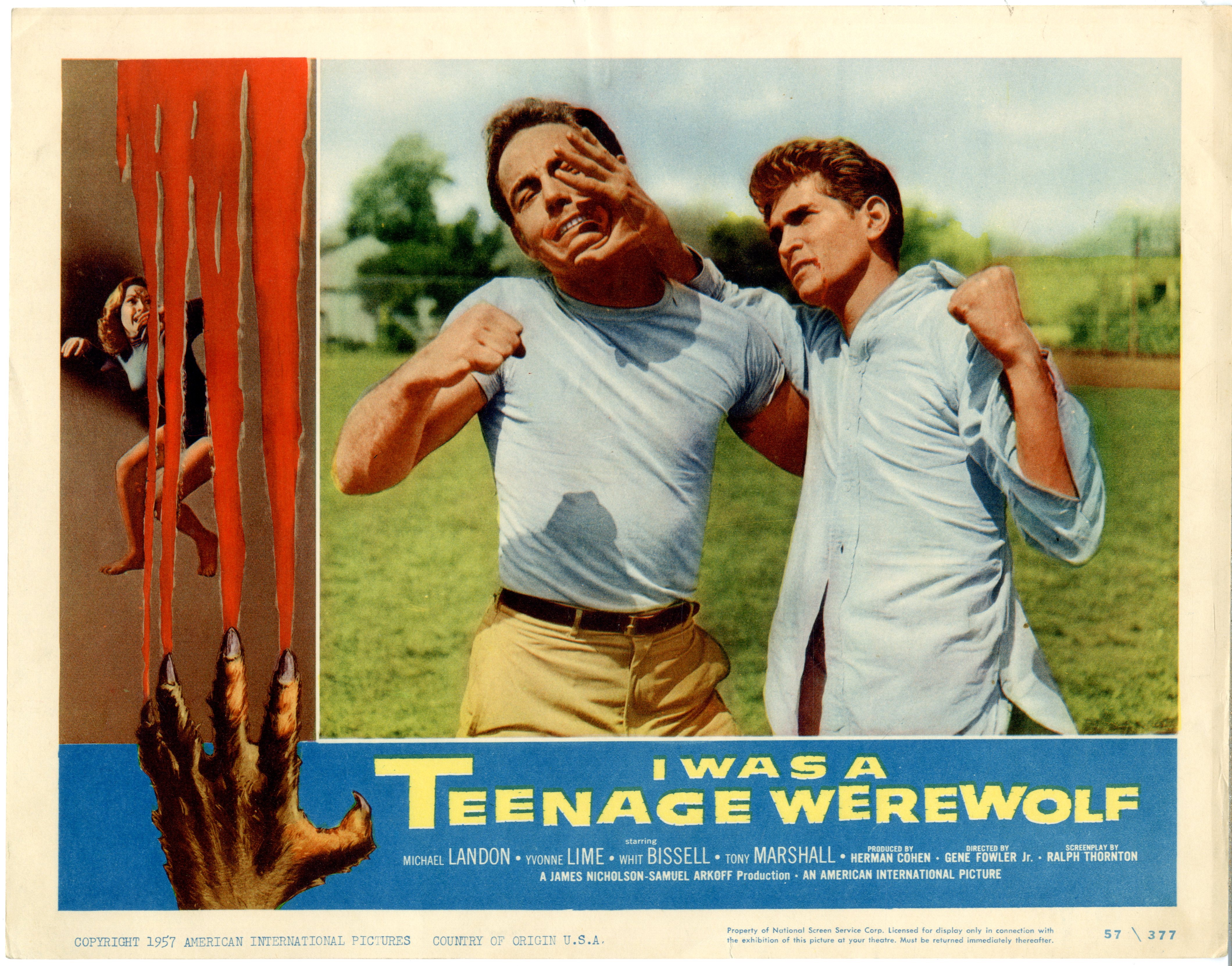 I Was A Teenage Werewolf   1957 - Primary